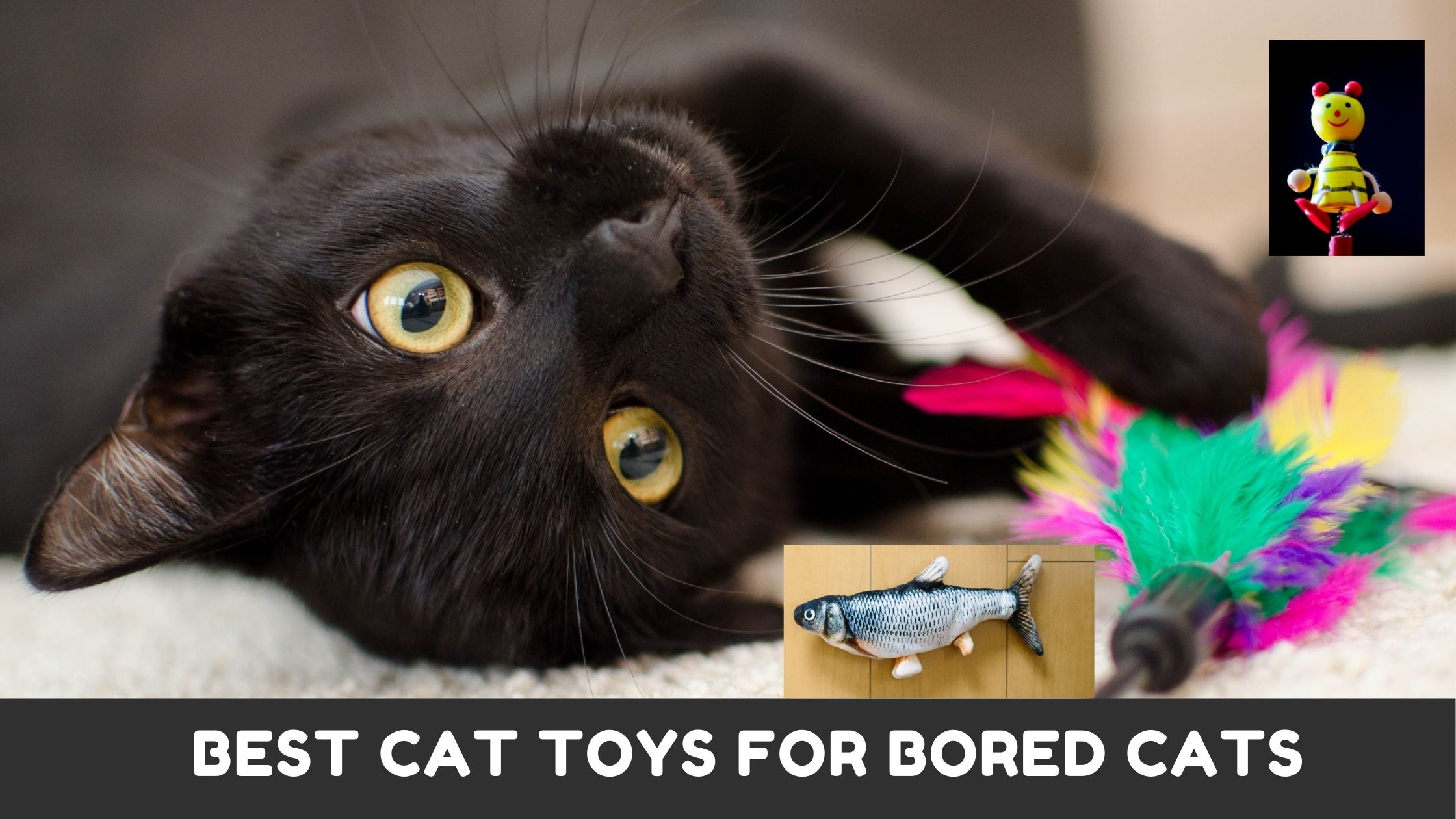 10 Best Cat Toys That Are Guaranteed Keep Your Kitties Entertained